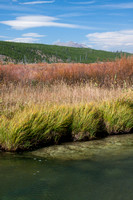 Quadrant Mountain peeks over willows and mature grasses on the bank of Winter Creek - Yellowstone National Park