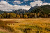 Fall In The Cabinet Mountains - 2013 -5