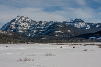 snow covered Round Praire in Yellowstone National Park with Amphitheater and Abiathar mountains in the background and bison in the meadow