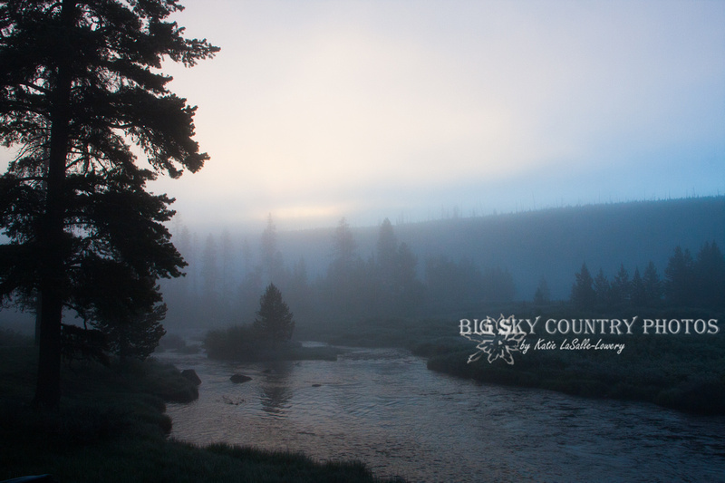 morning fog along Obsidian Creek - Yellowstone National Park