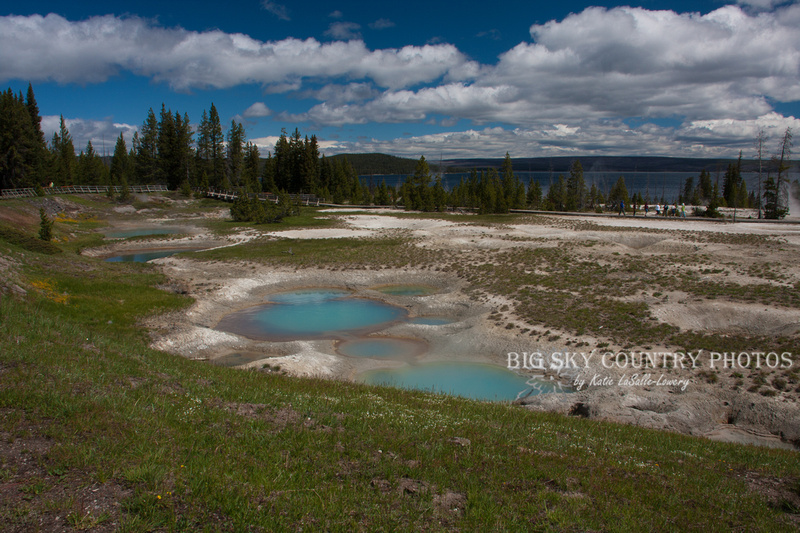 A scene from the West Thumb Geyser basin, along the shore of Yellowstone Lake
