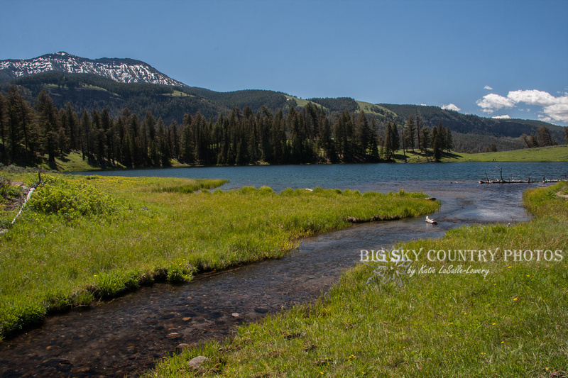 Trout Lake, and it's inlet, in Yellowstone National Park