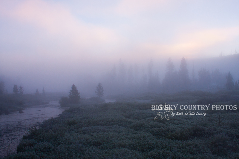 Morning Fog Along Obsidian Creek 2
